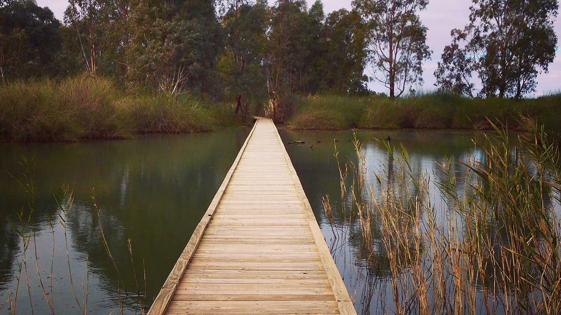 banrock-boardwalk